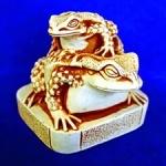 30.3 Жаба на жабе