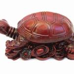 Черепаха на монетах средняя